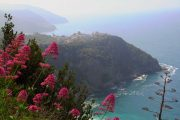 Liguria coastline, towards Corniglia