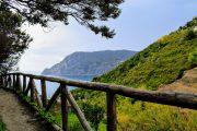 Hiking trail on the Ligurian Coast, near Monterosso