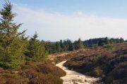 Wicklow Way walking trail
