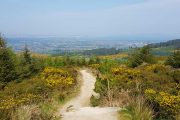 The view back towards Dublin as you begin to climb into the mountains on the Wicklow Way