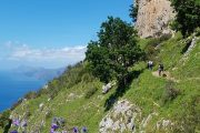 Walking the Sentiero degli Dei (Path of the Gods) along the Amalfi Coast