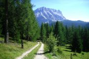 Forest trail in Val Badia with view to the Dolomites
