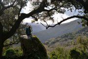 Hiking in the Sierra de Grazalema National Park