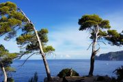 Hiking along the Mallorca coast from Cala Deia to Port Soller