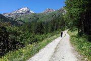 Aosta Valley hiking