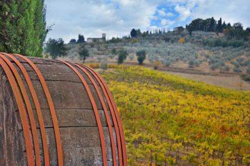 The Chianti Trail
