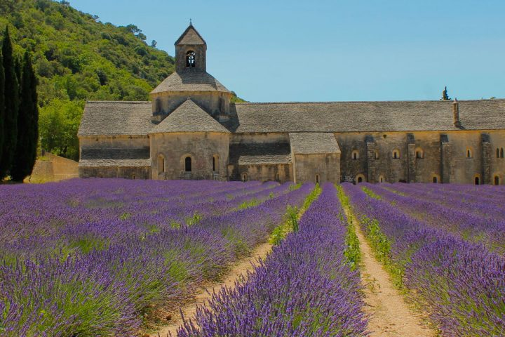 Abbaye de Sénanque© C.Chillio - CRT PACA