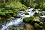 Bulgaria-mountain-stream