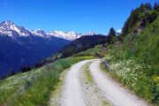 Aosta valley hiking path