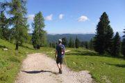 Hiking towards the Viehbergalm