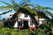 Traditional thatched cottage, Santana