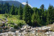 Mountain stream, Bansko