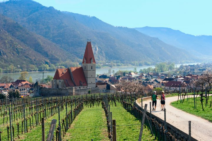 Hiking in the Wachau
