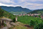 Walking trail, Spitz an der Donau