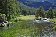Mountain stream in the Maira Valley