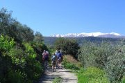 Spring hiking in Crete with view to the snow-capped Lefka Ori Mountains