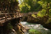 Vintgar Gorge walkway