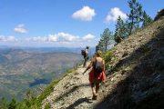 vandring Mont Ventoux