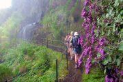 Walking among the waterfalls in Madeira