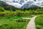 Boardwalk in the Zelenci Nature Reserve, Kranjska Gora