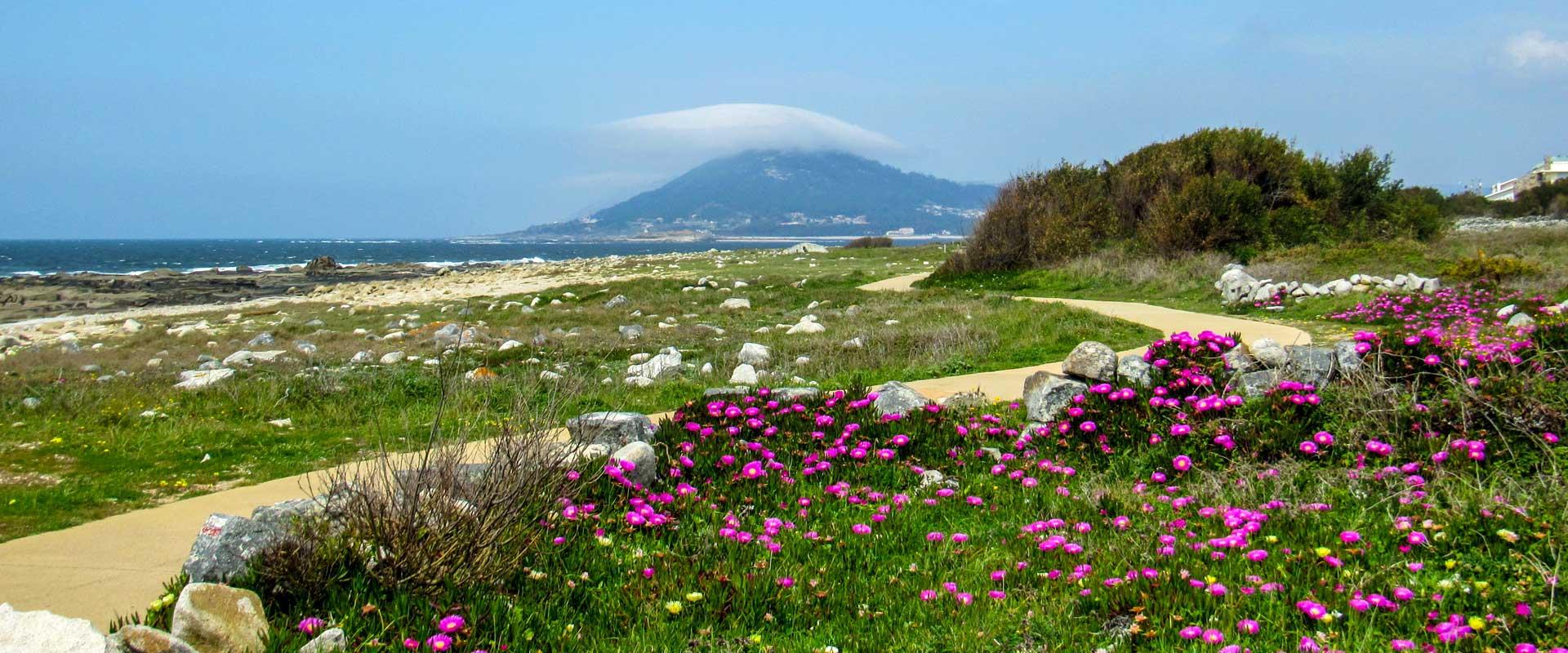 Camino Portugués: Coastal Way