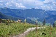 Zwieselalm mountain landscape