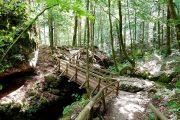 Toplitzsee walking trail (c) Funke