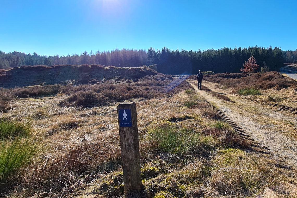 Haervejen, Denmark's Camino