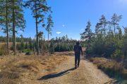 Hiking along Haervejen between Nørre Snede and Kollemorten