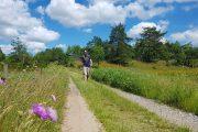 Hiking on Hærvejen, Denmark's pilgrim trail