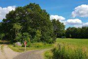 A fork in the road, Hærvejen