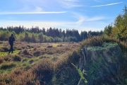 Hiking through the heathlands in Sjørup