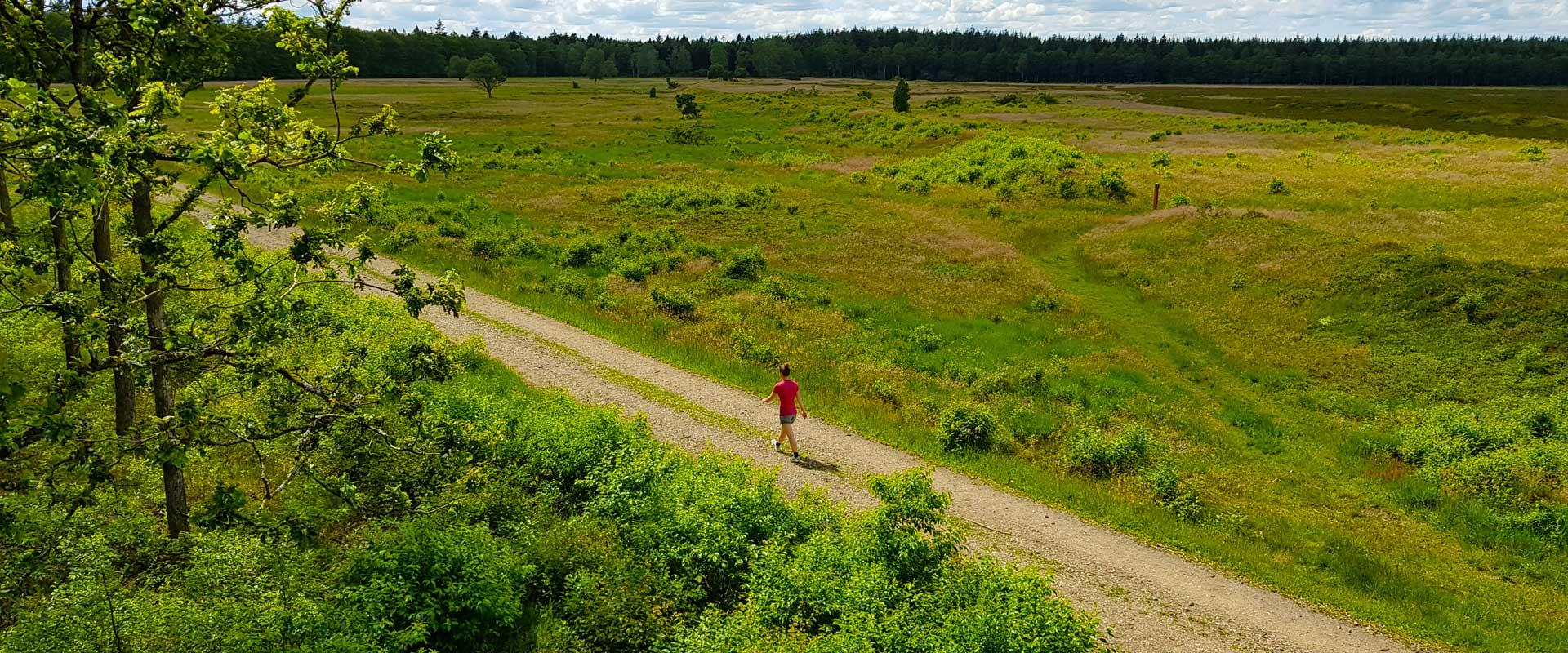 Hærvejen: Denmark's Camino