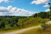 Hiking path in Dollerup Bakker