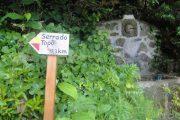 Hiking trail in Sao Jorge