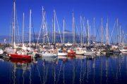 Horta Marina, Faial (c) Associacao de Turismo dos Acores