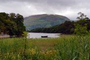 Boat on Muckross Lake, Killarney National Park