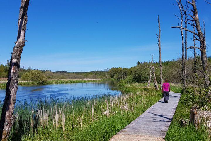 Jutland's Heritage Trail
