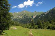 Walking trail near Casterino