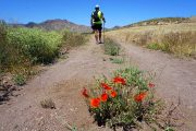 Hiking in the Cabo de Gata Natural Park