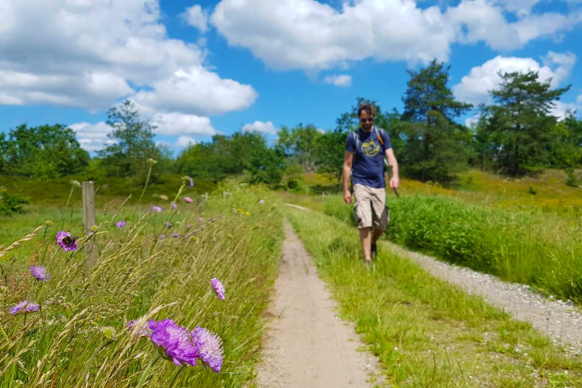 Hiking on Hærvejen in beautiful summer surroundings