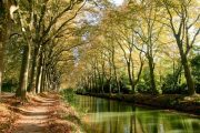 still waters on the Canal du Midi