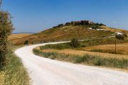 Cycling toward Montalcino