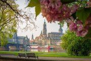 Dresden riverside path