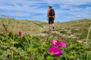 Hiking the North Sea Trail, Lønstrup