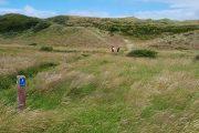 North Sea Trail, Skiveren sand dunes