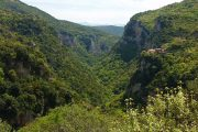 The Lousios Gorge