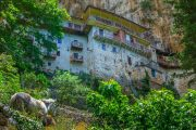 Prodromos Monastery, built on a cliff face in the Lousios Gorge