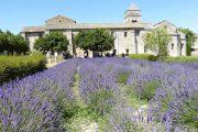 The monastery of Saint Pauld de Mausole, where Van Gogh spent his final year