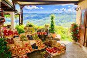 Fresh local produce in Motovun